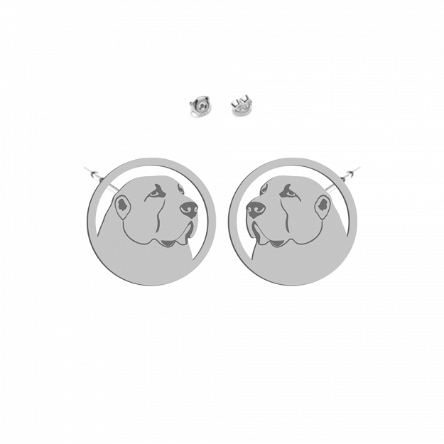 Earrings Central Asian Shepherd (Asian) Rhodium plated gold-plated silver