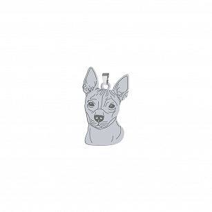 Pendant American hairless terrier (AHT) silver rhodium plated or gold-plated ENGRAVING FOR FREE - MEJK Jewelery